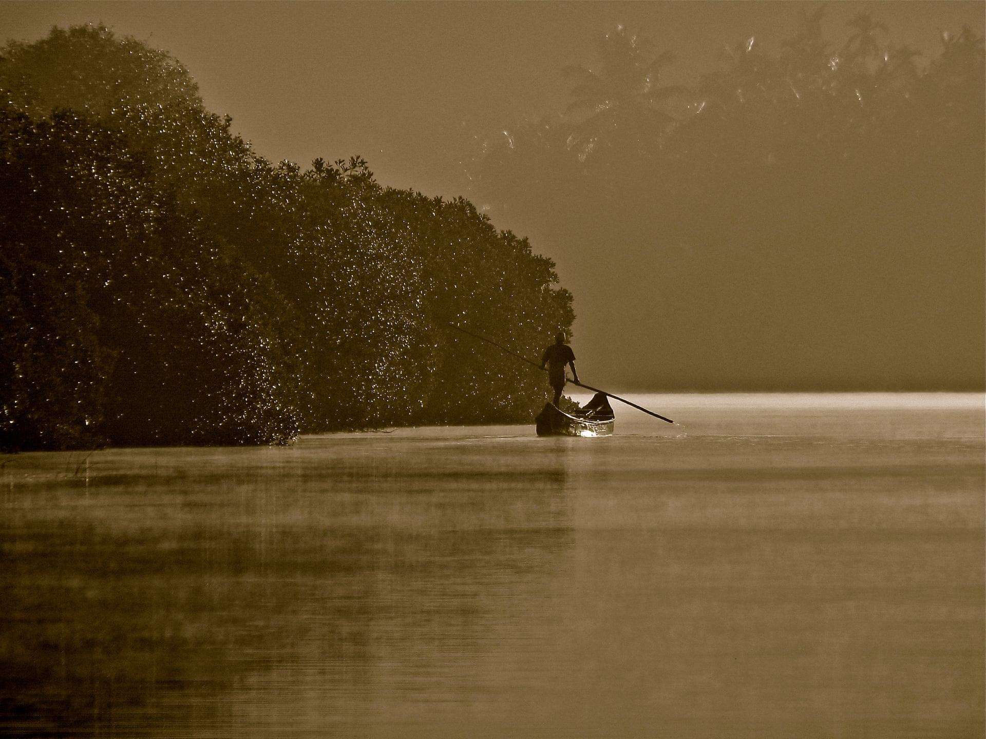 На фото — рыбак среди мангровых деревьев, ценность экосистем которых очень важна дляиндийских сообществ идля традиционных рыбаков. Фото сделано вКерале, Индия.