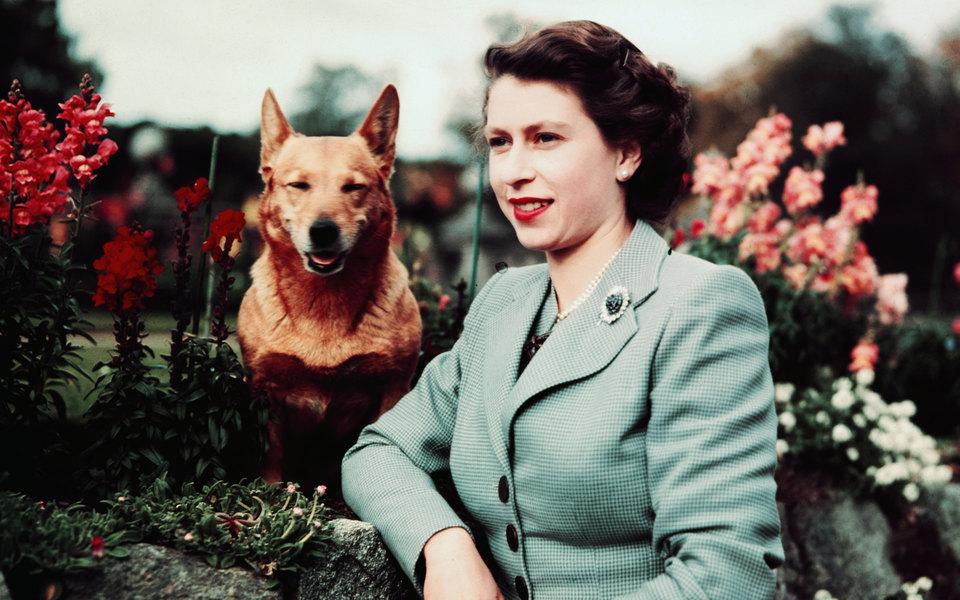 Елизавета II иее корги: история вфотографиях