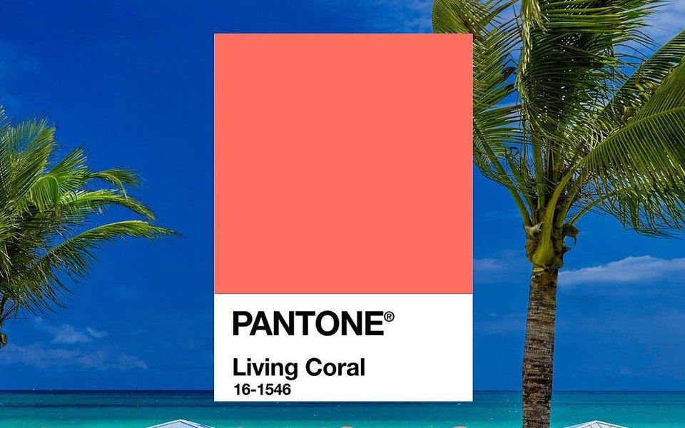 Институт цвета Pantone назвал главный цвет 2019 года