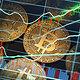 Курс биткоина засутки упал на25%