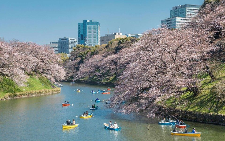 В Японии ввели налог навыезд изстраны. Он касается играждан, итуристов